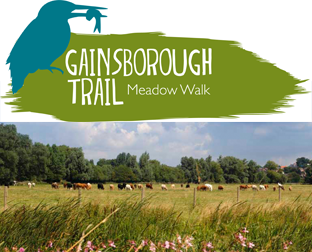Gaisborough Trail